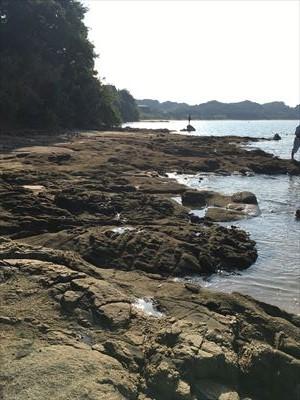 船越漁港の岩場