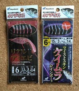 Hayabusa小アジ専科