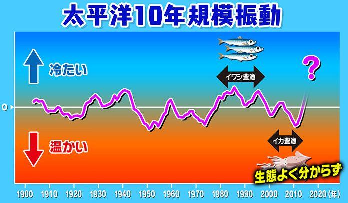 海水温度変化_太平洋