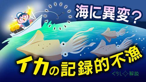 NHK_イカ不漁